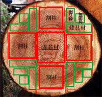 手順2 製材の木取り